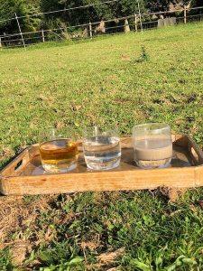 plateau avec des verres d'eau