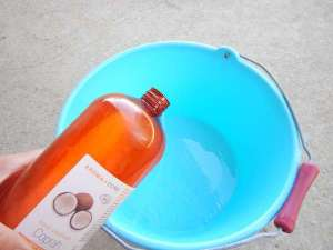huile de coco pour soins cheval